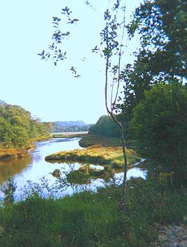 peche riviere morbihan
